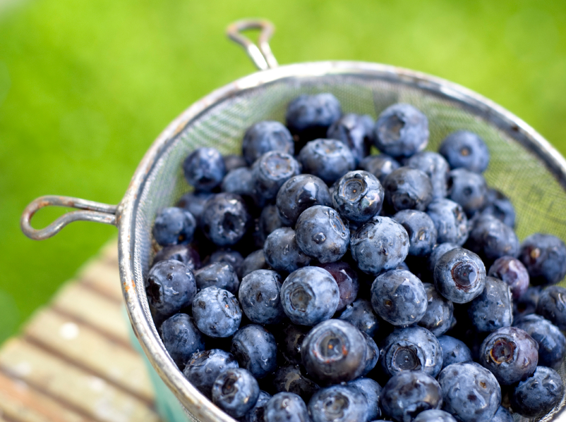 Blueberries may help to treat Parkinson's