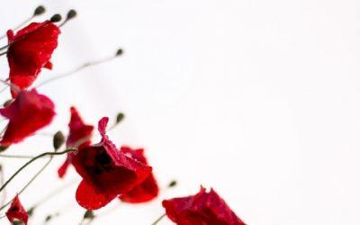 Robin Williams' death highlights mental health stigma