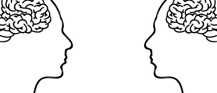 two illustrations of the brain