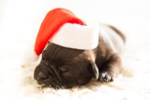 Tips for avoiding the Christmas blues