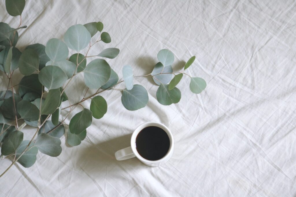 cup of coffee with plant
