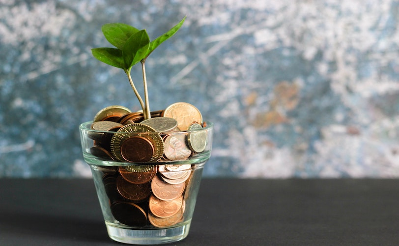 Coin in glass jar with greenery sprouting