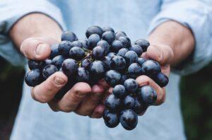 Seven brain boosting super foods