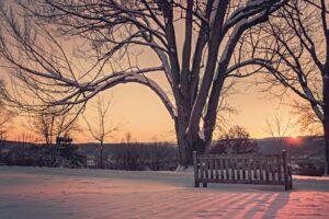 winter-sun-landscape