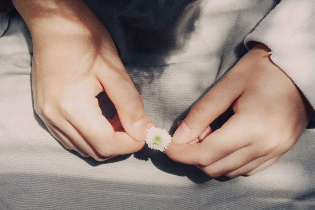 Hands holding daisy