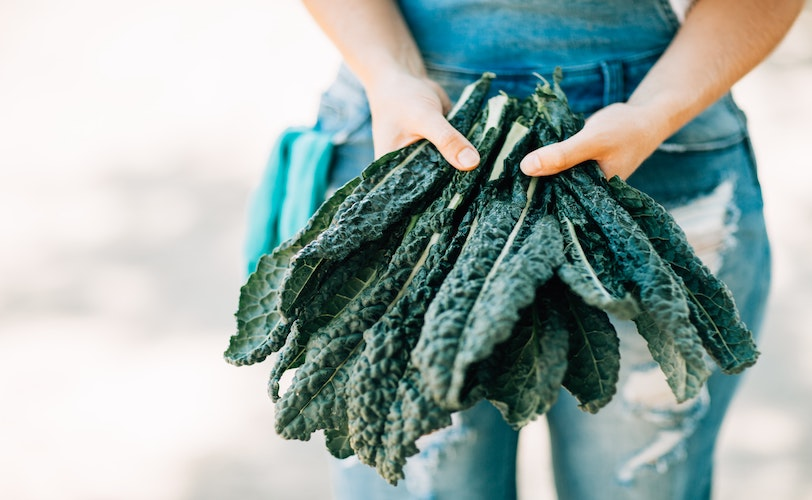 Person holding bunch of kale