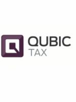 Qubic Tax