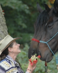 Louise Epona Pell - Equine Assisted Counselling