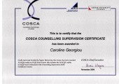 Certificate in Counselling Supervision