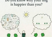 Mindfulness. being present in the moment reduces anxiety