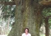Diane Elizabeth Blake MBACP & UKCP (Accred). image 1