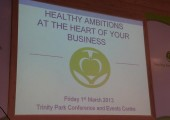 Presenting to Healthy Ambitions Suffolk<br />2013-Healthy Ambitions, Trinity Park, Ipswich