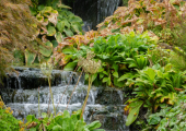 ...and the waterfall in Kilver Court Gardens. So calming and peaceful.