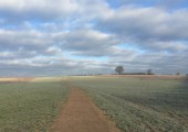 Heartwood - Walk and Talk location