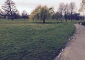 Walk and Talk UK - Lynn Allars MBACP image 2