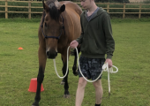 Equine assisted learning activity .
