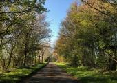 Road leading to the cottage<br />Rural and private