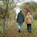 Walking and Talking Therapy<br />Walking with clients