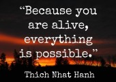 Because your alive everything is possible