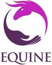 Equine Enlightenment
