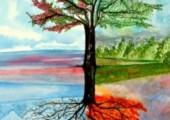 The evolving tree