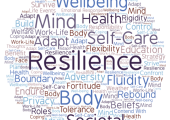 What makes up our resilience?
