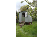 My counselling hut stands in a peaceful orchard