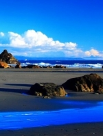 Coastal Counselling - Fi Dawson
