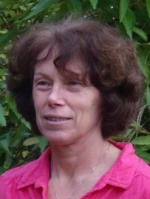 Lynn Rees Pg Dip CBT, MBACP
