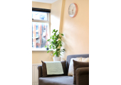 Muswell Hill Counselling - Light and airy