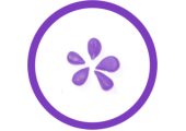 purplepippin.com