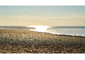 Rampion Counselling & Psychotherapy | LGBTQ+ | Brighton, Hove & Lewes image 1