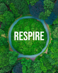 Respire Counselling