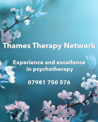 Thames Therapy Network
