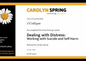Dealing with distress : working with suicide & self harm.