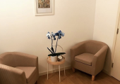 The psychotherapy room