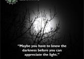 #Light #Appreciation #YPGI