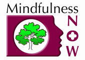 Mindfulness Now Practitioner