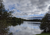 A view of the lake at Kiplin Hall. A great setting for ecopsychotherapy