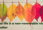 Because life is a non-renewable resource. Photo by Chris Lawton on Unsplash