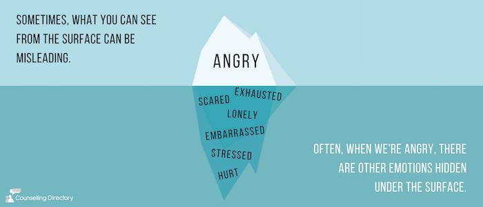 Anger Management Unit 9-12