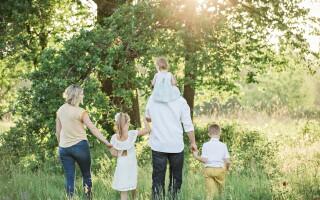 Family dramas - understanding relationship dynamics