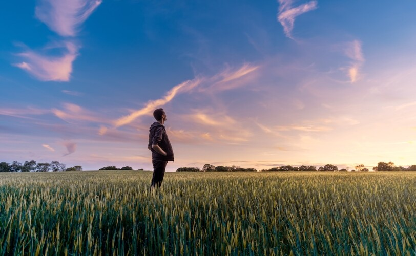 Man standing in a field looking up at twilight sky
