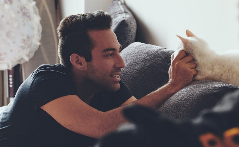 Man stroking cat