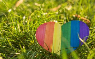 Counselling for parents with LGBTQ+ children