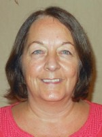Ann Lee. BSc Counselling, Dip. Supervision, UKCP, BSc Nursing.NMC
