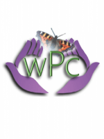 Wessex Psychotherapy and Counselling