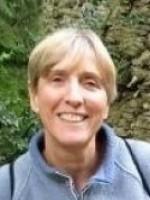 Judy White Reg MBACP (Amaryllis Counselling)