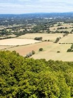 South Downs Counselling And Mediation Practice