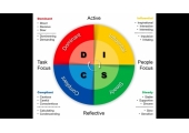 DISC Psychometric Personality Profiling
